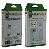Juice Cables [Apple MFi Certified] Lightning to USB Cable Sync Charging Lead for iPhone 6S, iPhone 6S plus, iPhone 6, iPhone 6 plus, iPhone 7, iPhone 7 Plus, iPhone SE, iPhone 5, 5c, iPad Mini, iPad Mini 2 3 4, iPad Air, iPad Pro, iPad 4G, iPod Touch 5G, Nano 7G 1.2M / 4ft - White