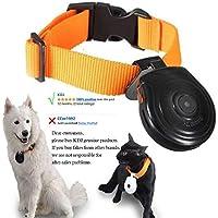 KDJ Haustier-Kragen-Videokamera, Digital-Videorecorder-Monitor für Hunde Katzen-Welpen-Sicherheit, Recorder Ihre Haustiere Alltagsleben, mit Telefonnummer, Verlust zu verhindern