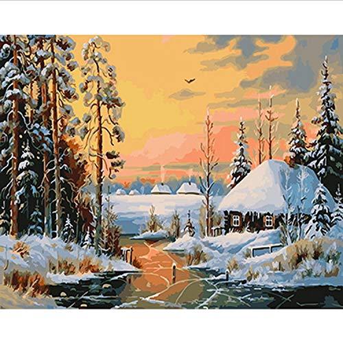 CBUSYS Rahmenlose Bild Ölgemälde by Zahlen Wanddekor DIY Malerei Auf Leinwand Für Wohnkultur 40 * 50 cm Schnee Nacht (Schnee Eule Kostüm)