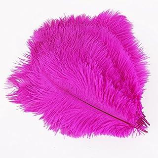 20 x plume d'autruche naturel 25-30cm fushia fêtes décoration