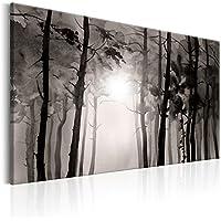 murando Cuadro – Bosque 90×60 cm