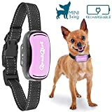 Best Bark Collars - Small Dog Bark Collar by GoodBoy Rechargeable And Review