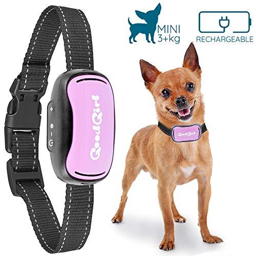 GoodBoy Pequeño Collar Anti ladridos para Perros Descargas Recargable 12-49cm y Resistente al Agua Sistema de Disuasión de Ladridos por Vibración para Perros Pequeños y Medianos DE +2,7 kg