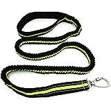 Reflektierende Nylon Elastische Hundeleine Führleine Gute Qualität Trainingsleine Welpenleine Bungee-Leine für kleine mittlere große Hunde Grün