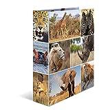 Herma 7168 Karton Motivordner DIN A4, Serie Tiere, Design Afrika, 70 mm breit, 1 Ordner, mit Innendruck