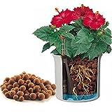 Argilla espansa in sacco per il rinvaso 7 litri per giardino giardinaggio (1000021647)