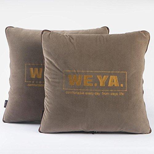 Unbekannt CJC 2 X Kissen Multifunktionsrückenlehne Quilt Luxus Trendy Textilien Faltbare Bettwäsche Dünne Bequemlichkeit Carry Storage Machine Wash Atmungsaktiv (Farbe : T1) (Quilt Set Liege)