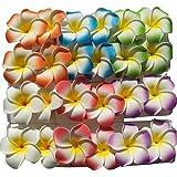 Teensery Colorful 5 cm Hawaiian Plumeria Foam Flower Hair Clips For Bridal Wedding Party Color Random (24 pcs)