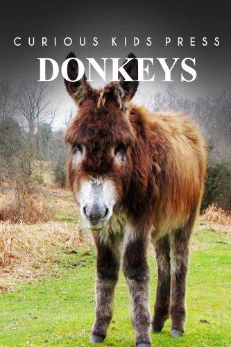 Donkey - Curious Kids Press