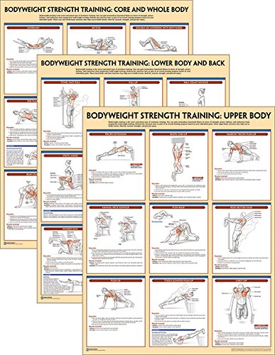 Bodyweight Strength Training Anatomy Poster Series por Human Kinetics