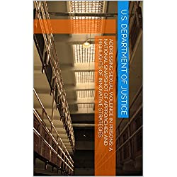 Addressing Sexual Violence in Prisons: A National Snapshot of Approaches and Highlights of Innovative Strategies (English Edition)