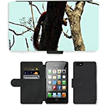 Grand Phone Cases PU Flip Carcasa Funda de Cuero Piel Cubre Case // M00141221 Malabar scoiattolo gigante Ratufa // Apple iPhone 4 4S 4G