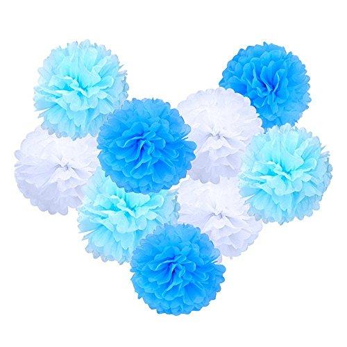 eBoot Papel de Seda Pom Poms Bola de la Flor para Decoración del Boda Partido,10 Pulgadas, 9