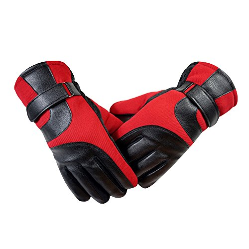 Eizur Uomini Invernali Caldo touch screen Guanti Pelle outdoor sport Antivento Antiscivolo Guanti per Ciclismo Sci Escursionismo Caccia Arrampicata Campeggio Taglia 27*12.5cm (Rosso/Blu/Nero/Grigio)