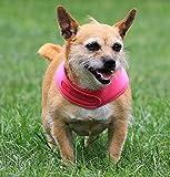 Pañuelo de lujo para perros: mantén a tu perro fresco este verano, reversible para 2 colores, hecho a mano en el Reino Unido, Cerrador ajustable, pequeño plateado/rosa
