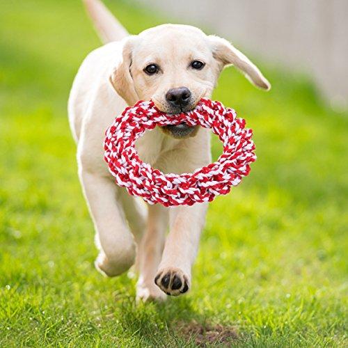 Hundeseil Spielzeug, Hunde kau Spielzeug 100% Baumwolle Unzerbrechlich Spielzeug Zähne sauber Funktion für Großen Hund Zerren, Kauen, Werfen Training Haushunde Spielzeug