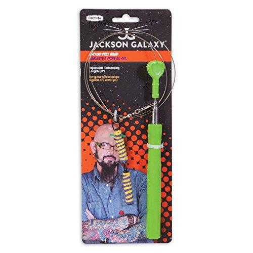 jackson-galaxy-ground-wand-with-toy