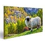 Bild Bilder auf Leinwand Schweizer Alpen und Walliser