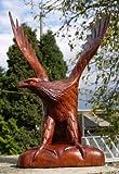 30 cm STEIN ADLER SKULPTUR DEKORATION HOLZ Greifvogel Adler02