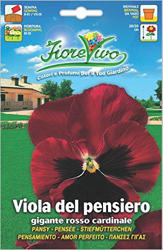 Hortus 60SDFV054 Fiorevivo Viola Pensiero Gigante, Rosso Cardinale, 13x0.2x20 cm