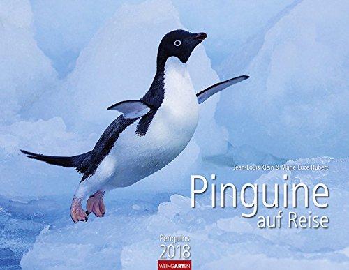 Kalender Angeln Eis (Pinguine auf Reise - Kalender 2018)
