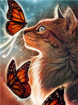 RunFar Malen Nach Zahlen Erwachsene DIY Vorgedruckt Leinwand Ölgemälde Geburstag- Weihnachtengeschenk Katze und Schmetterling 40*50CM