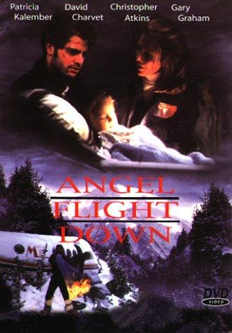 Angel Flight Down