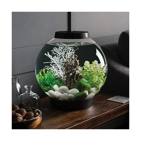 biOrb Classic 15L Aquarium, Black with LED lighting