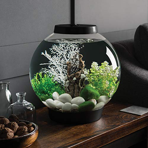 Baby biOrb Kugel Aquarium 15 l – Schwarz – Design Komplett Aquarium 15 Liter - 2