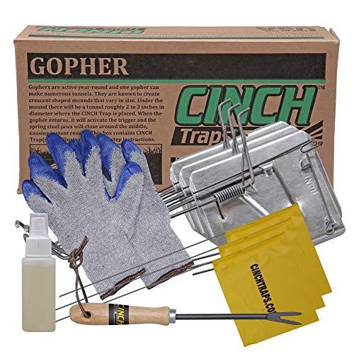 Cinch Gopher Falle mit Tunnel Markierung Flagge (klein) Robustes, wiederverwendbares Nagetierfangsystem, Rasen, Garten und Außenbereich, mit Werkzeug (3 Stück) -