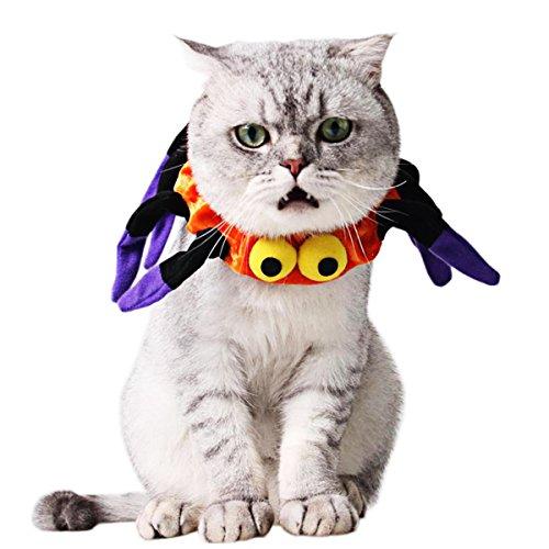 Kefan Katze Kostüm Halloween Creative Spider Halsband mit gruseligen Augen für Katzen kleine (Spider Für Katzen Kostüm)