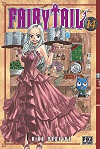 Fairy Tail Edition simple Tome 14