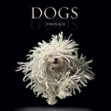 [ Dogs ] By Flach, Tim (Author) [ Oct - 2010 ] [ Hardcover ]