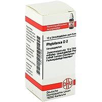 PHYTOLACCA D 2 Globuli 10 g preisvergleich bei billige-tabletten.eu