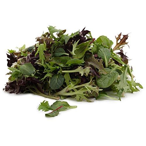 Virtue Mesclun Mild Mix- Mild and Wild Brassica Mix~colorful Salad ~Organic 2000 Seeds