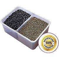Scomparto alimenti contenitori per cereali, con coperchi, riutilizzabile–Cucchiai Free 2