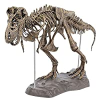 Xuyrie Dinosaur Skeleton Model Kit Tyrannosaurus Rex Skeleton Dinosaur Animal Collector Decor Model Toy