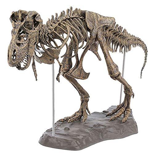 Modello di Scheletro di Dinosauro, Giocattoli Edu T-Rex, Kit di Modelli in Scala | Assemblare e visualizzare | Museo del Dinosuar Fai-da-Te | Decoratore da Collezione | Scheletro True to Life