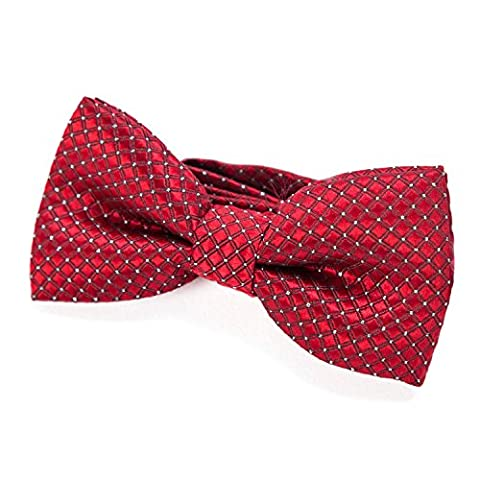 DonDon Edle Kinder Jungen Fliege gebunden und längenverstellbar 9 x 4,5 cm rot glänzend mit silbernen