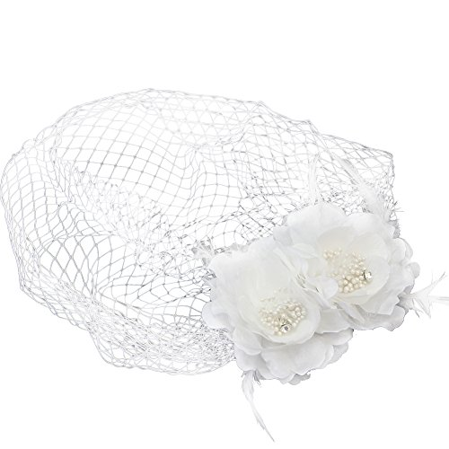 Pinzhi Frauen Blumen Birdcage Gesicht Schleier mit Kamm für Hochzeit Braut Henne Nacht Party Dressing Up (Kostüme Erwachsene Jagd Camo)