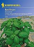 Basilikum Grosses grünes Genoveser breitblättrig einjährig