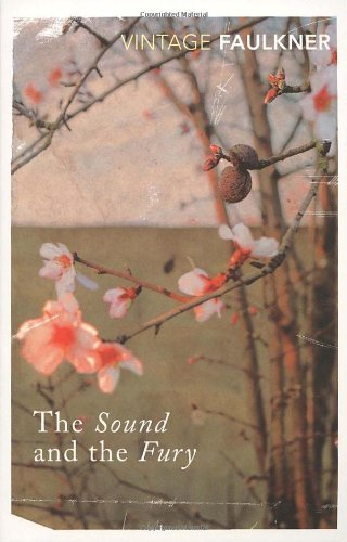 The Sound And The Fury (Vintage Classics) by Faulkner, William (1995) Paperback
