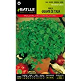 Semillas Batlle 014503BOLS - Perejil Gigante