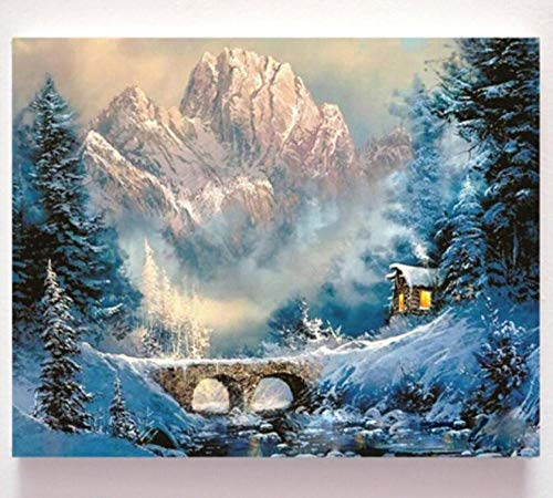 HNZZLC Oil Painting,Canvas DIY,Children's Adult Digital Painting,Romance,Gift,Artwork Set,Entry Crafts,Relaxation,Decorations,Snow Scene,40X50Cm