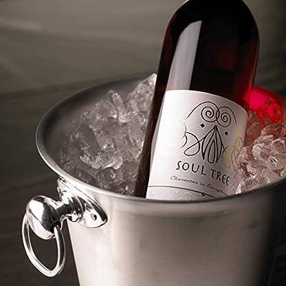 Indischer-Wein-Soul-Tree-Signatum-ROS-SHIRAZ-ZINFANDEL-Aus-dem-Herzen-Indiens-dem-Nasik-Valley-125-Vol-750-ml