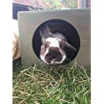 Hop Inn Rabbit Hide House (Sage) LARGE Indoor or Outdoor, Cat Hide, for Big Rabbits and Cats too, READY MADE and Built… 14