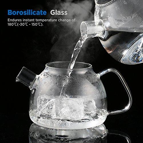 Ecooe Teekanne Glas Teebereiter 800 ml mit abnehmbare Edelstahl-Sieb Glaskanne Aufheizen auf dem Herd