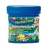 JBL Filter Start Pond 27325 Bakterienstarter für Teichfilter, 250 g