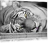 Pixxprint ruhender Tiger schwarz/weiß auf Leinwand, XXL riesige Bilder fertig gerahmt mit Keilrahmen, Kunstdruck auf Wandbild mit Rahmen, günstiger als Gemälde oder Ölbild, kein Poster oder Plakat