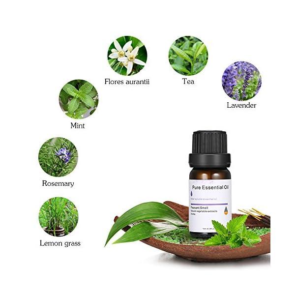 Lilideni Aceite Esencial Puro de la Menta 10ml para Humiidifier Aromatherapy Home Bedroom Bar Club Massage